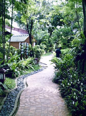 Paradise Beach Resort: Le jardin