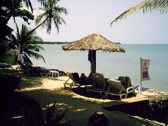 Paradise Beach Resort : Sur la plage