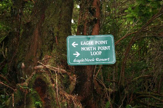 Eagle Nook Resort: Numerous Hiking Trails