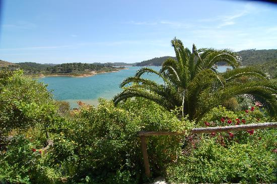 Quinta do Barranco da Estrada: Palm trees and the garden, lake in background