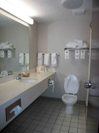 Best Western Airport Inn & Suites Cleveland: Room 328 Bathroom