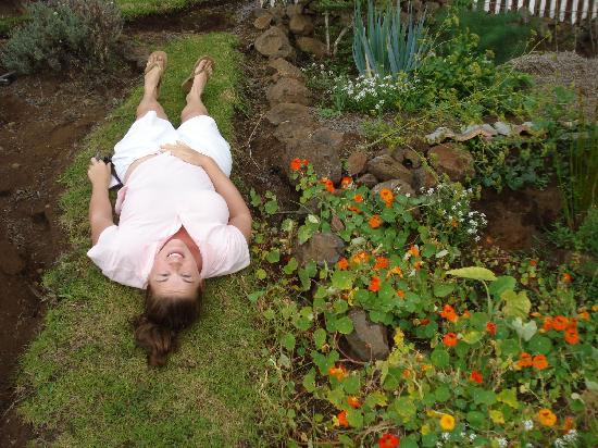Ali'i Kula Lavender Farm: the lavender's getting to me...