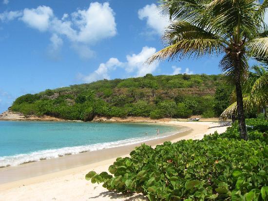 Hawksbill Bay: Great Beach