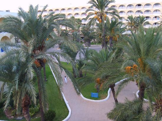 SunConnect One Resort Monastir: Parco