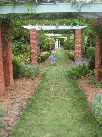 River Farm : Garden