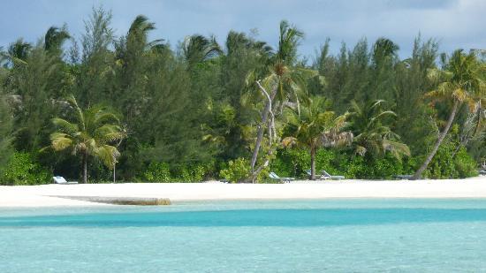 Anantara Veli Maldives Resort: the view again - 7:45 am