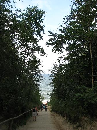 Jastrzebia Gora, Polen: Path from Hotel that takes you to the Baltic Sea