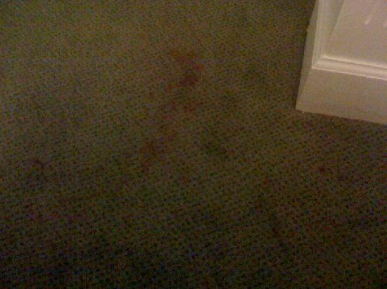 SpringHill Suites Asheville: Carpet stain