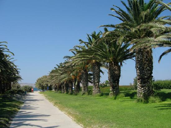 Caravia Beach Hotel: allée principale vers la plage