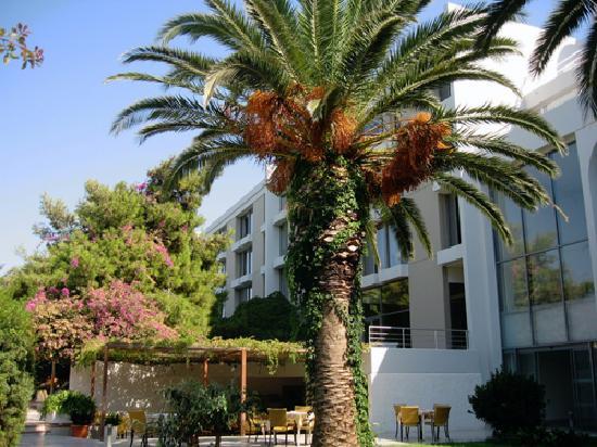 Caravia Beach Hotel: neptune bar et jardins