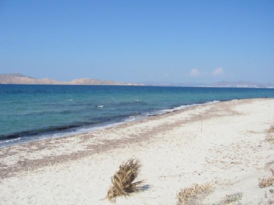 Caravia Beach Hotel: plage