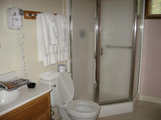 Ridge Top Village at Shawnee: Bathroom