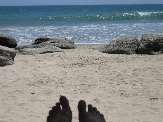 Hotel Casa de Playa: the beach from my lounger