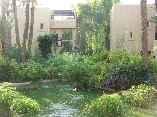 Club Med Marrakech le Riad : les bassins