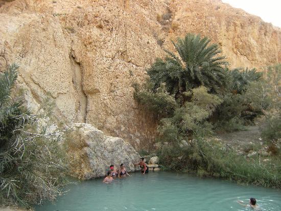 Hotel Shalimar : L' oasi nel deserto roccioso