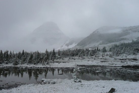 East Glacier Park, MT: Logan Pass (Sept 1st)