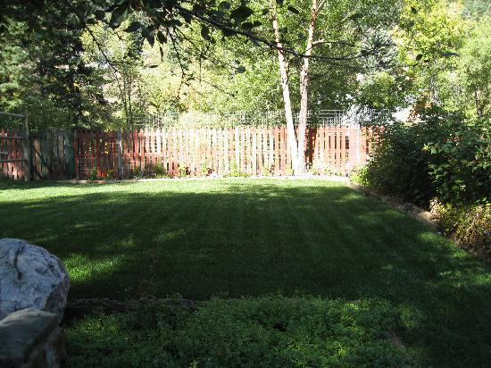 Secret Garden: garden