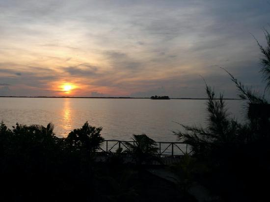 Thatch Caye Resort: sunrise from our casita