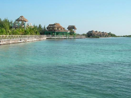 Thatch Caye Resort: from the dock area