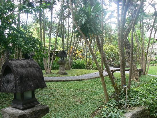 Hotel Vila Lumbung: The garden path from our room to the pool