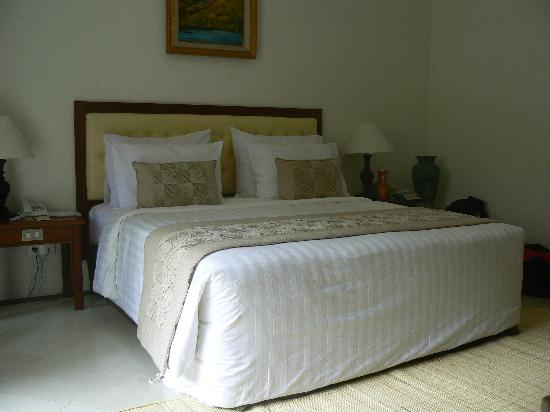 Hotel Vila Lumbung : Our ground floor hotel room