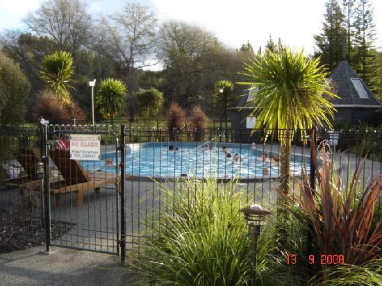 Wairakei Resort Taupo: Swimming Pool