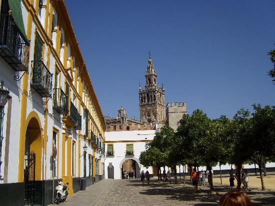 Patio de armas picture of seville province of seville - Garden center sevilla ...