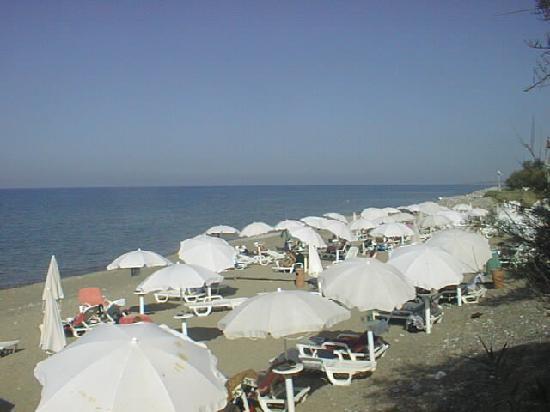 Fiesta Hotel Garden Beach: Beach view