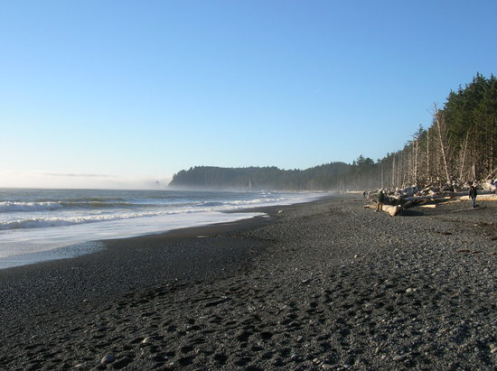Forks, Etat de Washington : Rialto Beach