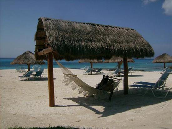 Presidente Inter-Continental Cozumel Resort & Spa: Crowded Beach