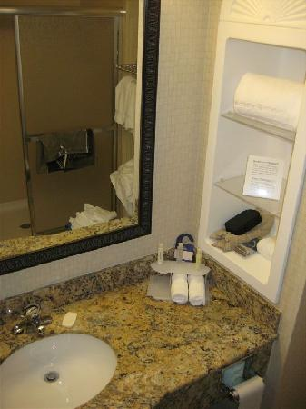 Holiday Inn Express Hotel & Suites Rochester: Bathroom - King suite