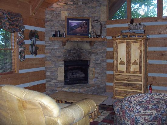 Timberwinds Log Cabins: living area