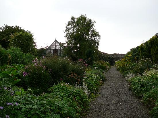 Glin Castle: Walled garden