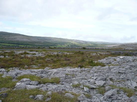 Cappabhaile House : The Burren/Ballyvaughn area