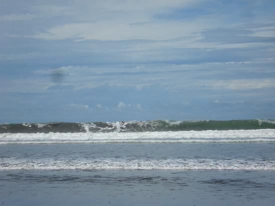 Hotel Domilocos: Surf on dominical beach