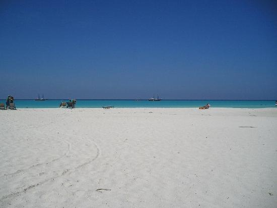 Divi beach picture of tamarijn aruba all inclusive - Divi tamarijn aruba ...