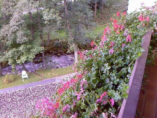Hotel Terra-Nova: view from balcony