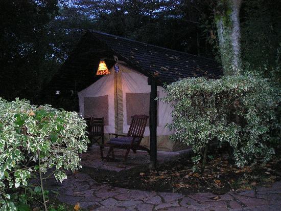Sarova Mara Game Camp: The Tent at Night