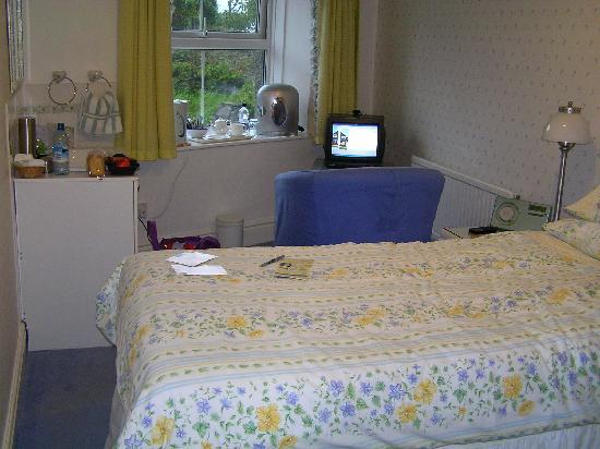 Wenallt Guest House: Bedroom