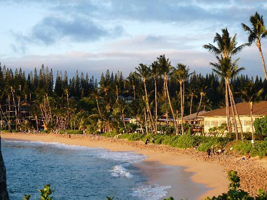 Napili Surf Beach Resort: Napili beach, nice friendly atmosphere