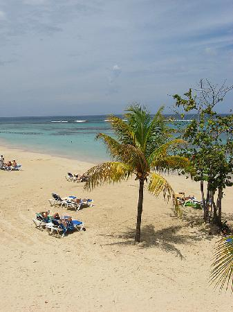 Mammee Bay Beach Picture Of Hotel Riu