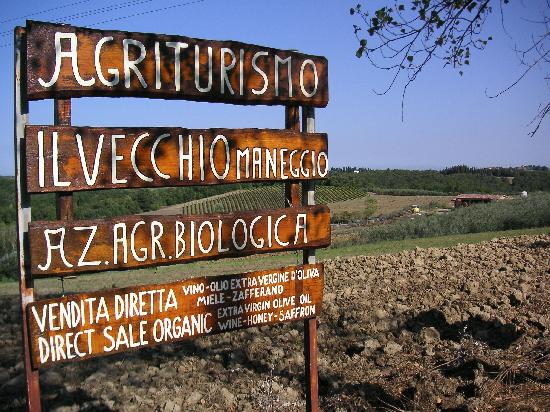 Agriturismo Il Vecchio Maneggio 사진