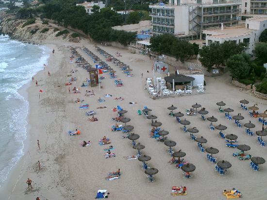 Son Moll Sentits Hotel & Spa: der strand vom hotel son moll