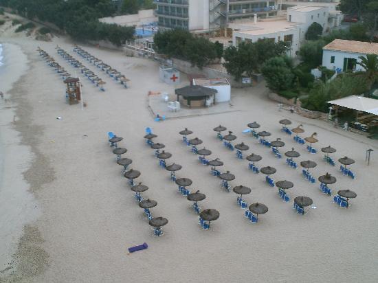 Son Moll Sentits Hotel & Spa: genug für alle