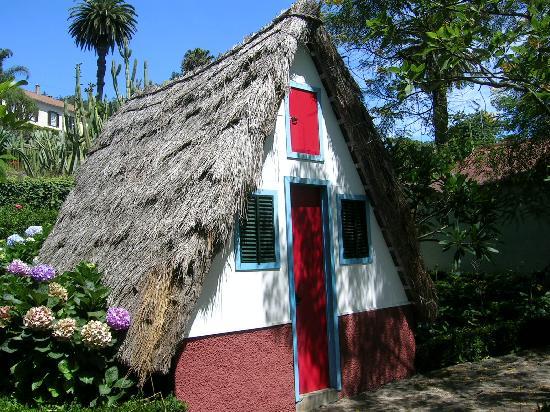 Madeira, Portugal: Funchal jardin botanique