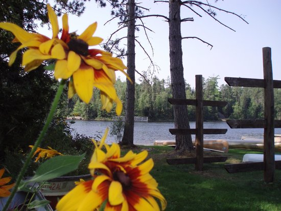 Fenske Lake Resort Cabins : resort grounds