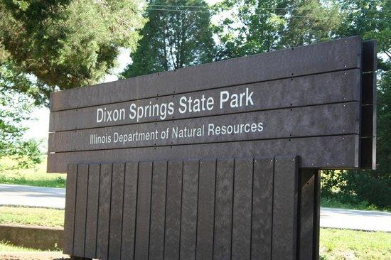 Golconda, อิลลินอยส์: Dixon Springs State Park