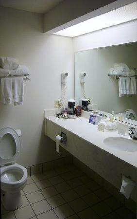 Comfort Inn & Suites: With the exception of the shower curtain, the bath was servicable.