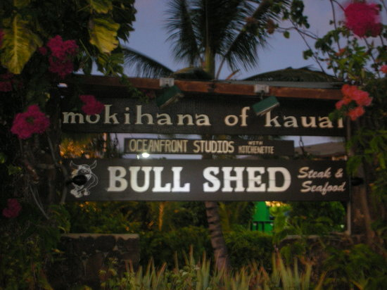 Bull Shed : Way out front
