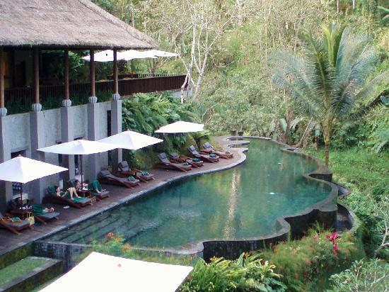 Maya Ubud Resort & Spa: piscina del hotel